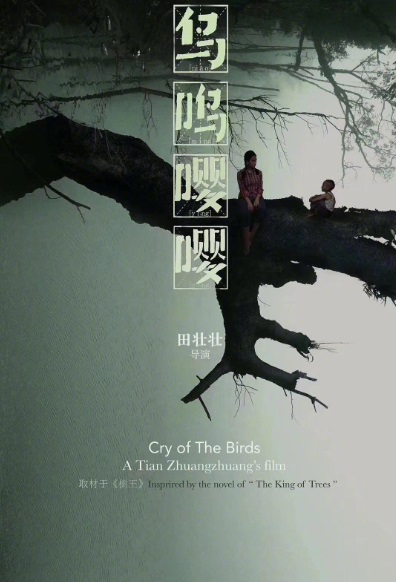 Cry of the Birds Movie Poster, 鸟鸣嘤嘤 2020 Chinese film