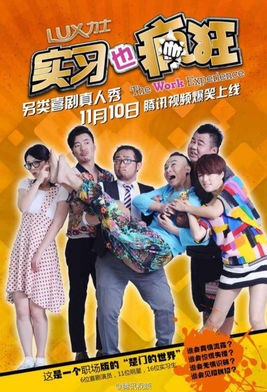 The Work Experience 2014 Poster, 2014 Chinese TV show