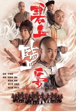 Sweetness in the Salt Poster, 2009 Hong Kong TV Drama Series