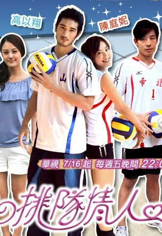 Volleyball Lover Poster, 2010