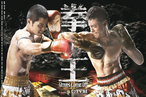 Gloves Come Off Poster, 2012