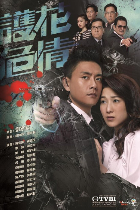 Witness Insecurity Poster, 2012 TVB drama