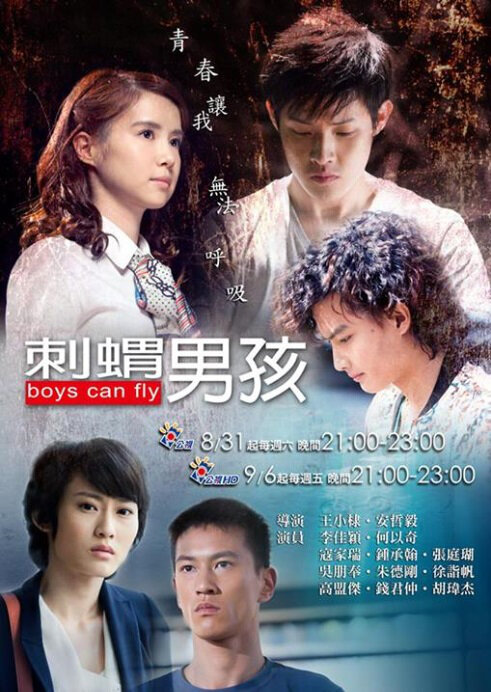 Boys Can Fly Poster, 2013, Angel Ho