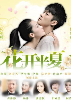 Flower Pinellia Poster, 2013 Chinese TV drama series