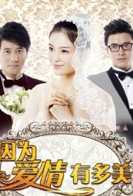 Happy Life Poster, 2013 Chinese TV drama series