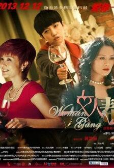 Woman Gang Poster, 2013 Chinese TV drama series
