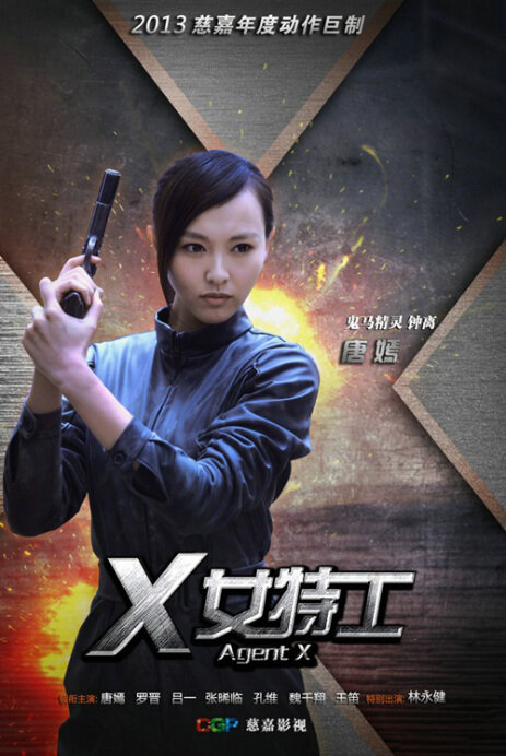 Agent X Poster, 2013