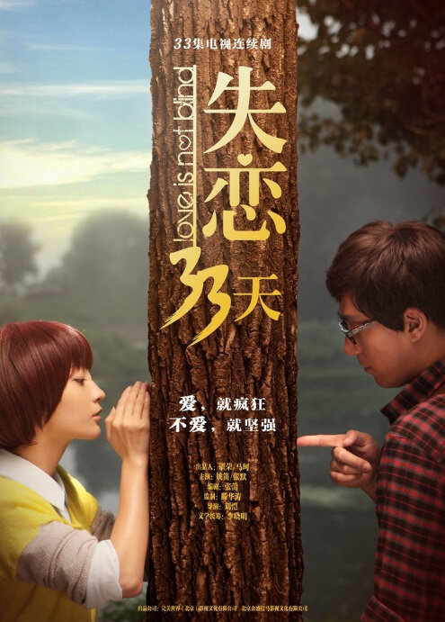 Love Is Not Blind Poster, 2013 China TV drama series