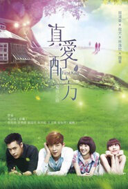 First Kiss Poster, 2014 Taiwanese TV Drama Series