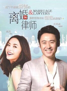 Marriage & Lawyers Poster, 2014