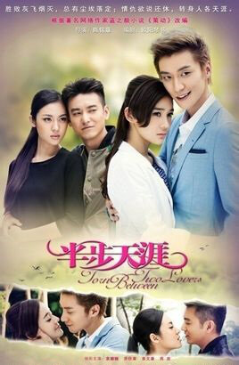 Torn Between Two Lovers Poster, 2014