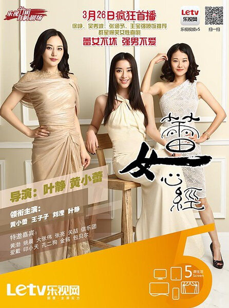 Woman Sutra Poster, 2014 chinese tv drama series