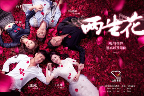 Two Flowers Poster, 2015 chinese tv drama series