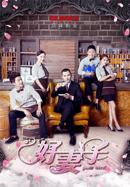 Good Wife Poster, 2016 TV drama series