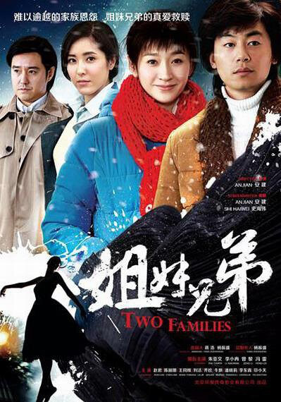 Two Families Poster, 2016 Chinese TV drama series