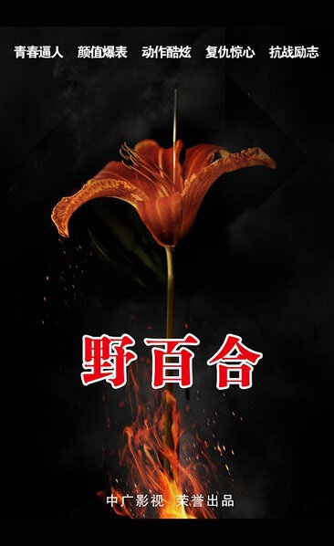Wild Lily Poster, 2016 Chinese TV drama series