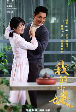 My Aunt Poster, 2017 Chinese TV drama series