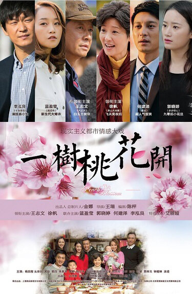 The Peach Blossom Poster, 2017 Chinese TV drama series
