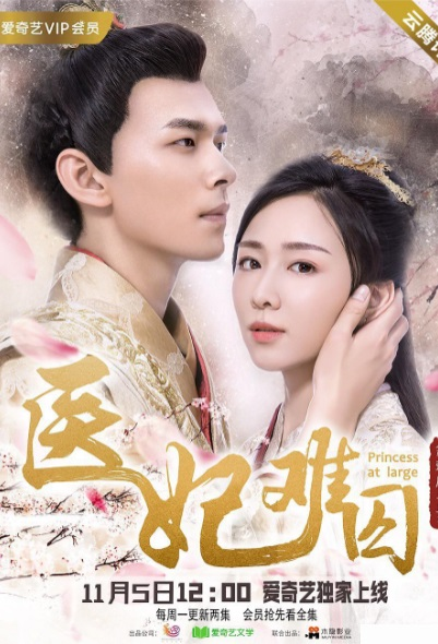 Princess at Large Poster, 医妃难囚 2018 Chinese TV drama series