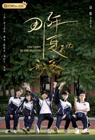 Dim Light in the Shadow Poster, 那年夏天的秘密 2020 Chinese TV drama series